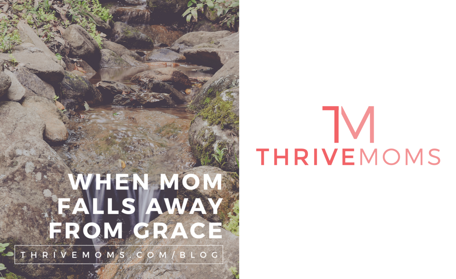 thrive moms guest